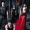 Caroline Dries: co čeká Stefana, Damona a Elenu? a další útržky z 5. série