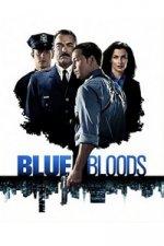 Blue Bloods (Spravedlnost v krvi)