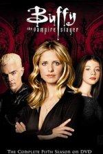 Buffy the Vampire Slayer (Buffy, přemožitelka upírů)