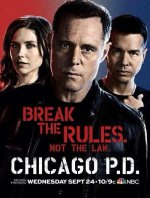 Chicago P.D. (Policie Chicago)