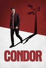 Condor (Kondor)