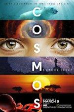 Cosmos: A Spacetime Odyssey (Kosmos - časoprostorová odysea)