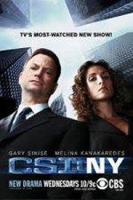 CSI: NY (Kriminálka New York)