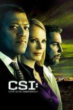 CSI (Kriminálka Las Vegas)