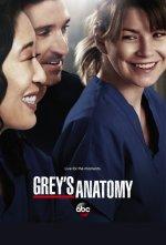 Grey's Anatomy (Chirurgové)
