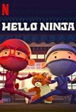 Hello Ninja (Nazdar Nindžo)