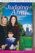 Judging Amy (Soudkyně Amy)
