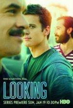 Looking (Hledání)
