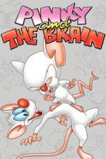 Pinky and the Brain (Neuvěřitelná dobrodružství Rudly a Koumáka)