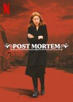 Post Mortem: No One Dies in Skarnes (Post mortem: Město, kde nikdo neumírá)