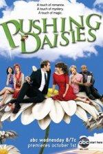 Pushing Daisies (Řekni, kdo tě zabil)