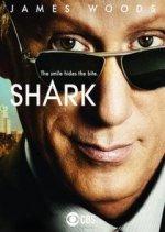 Shark (Žralok)