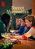 Sweet Magnolias (Sladké magnólie)