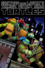 Teenage Mutant Ninja Turtles (2012) (Želvy Ninja)