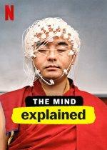 The Mind, Explained (Záhady lidské mysli)